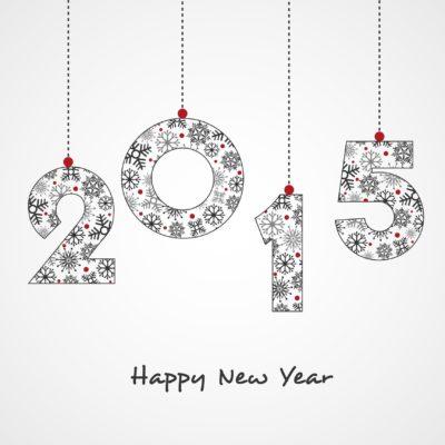 Celebration of Happy New Year 2015.